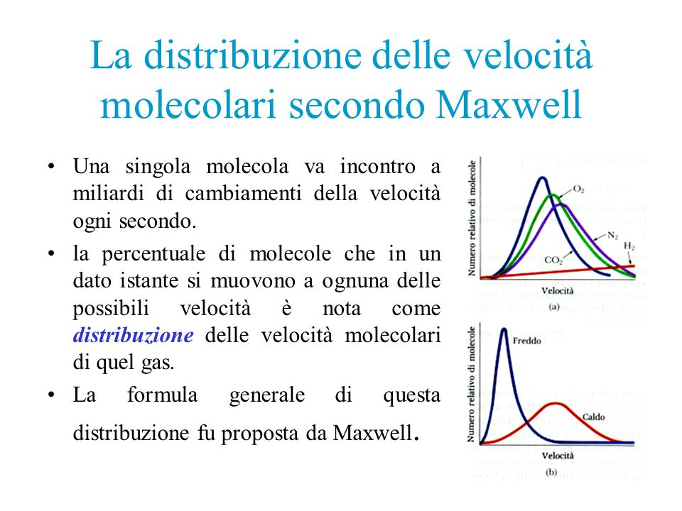 La distribuzione delle velocità molecolari secondo Maxwell Una singola molecola va incontro a miliardi di cambiamenti della velocità ogni secondo. la