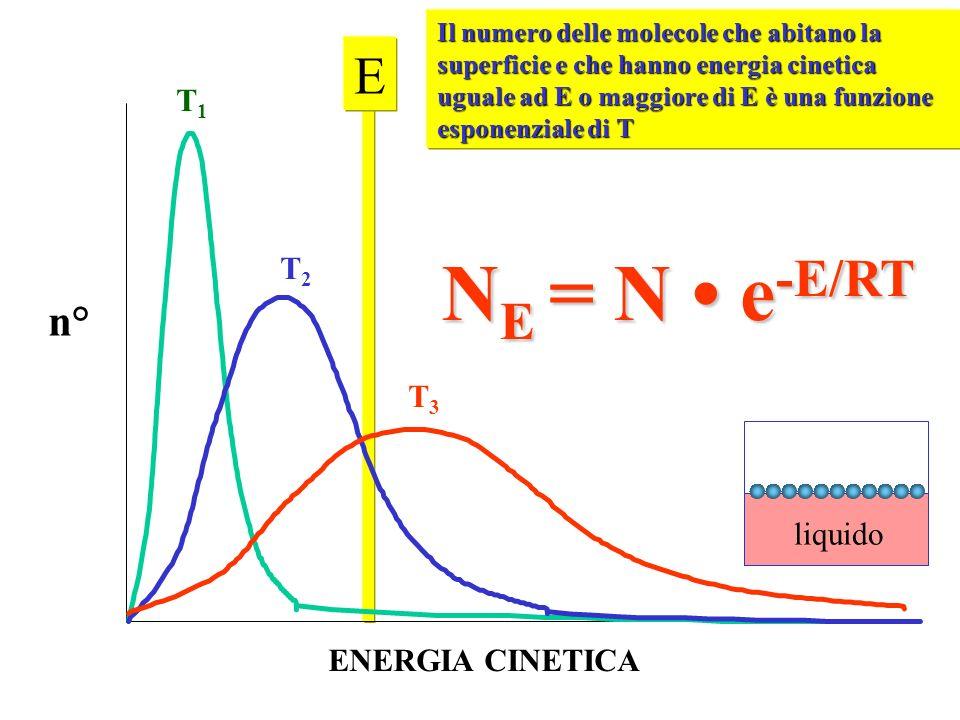 T1T1 T2T2 T3T3 n° ENERGIA CINETICA E Il numero delle molecole che abitano la superficie e che hanno energia cinetica uguale ad E o maggiore di E è una