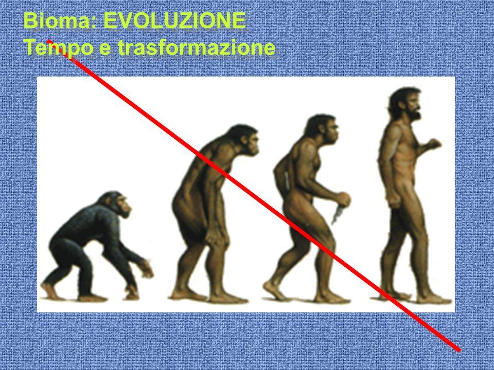 Bioma: EVOLUZIONE Tempo e trasformazione Bioma: EVOLUZIONE Tempo e trasformazione