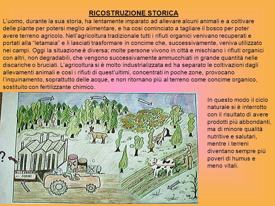 RICOSTRUZIONE STORICA Luomo, durante la sua storia, ha lentamente imparato ad allevare alcuni animali e a coltivare delle piante per potersi meglio al