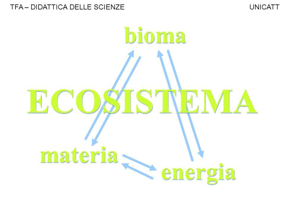 materia energia bioma ECOSISTEMA TFA – DIDATTICA DELLE SCIENZE UNICATT