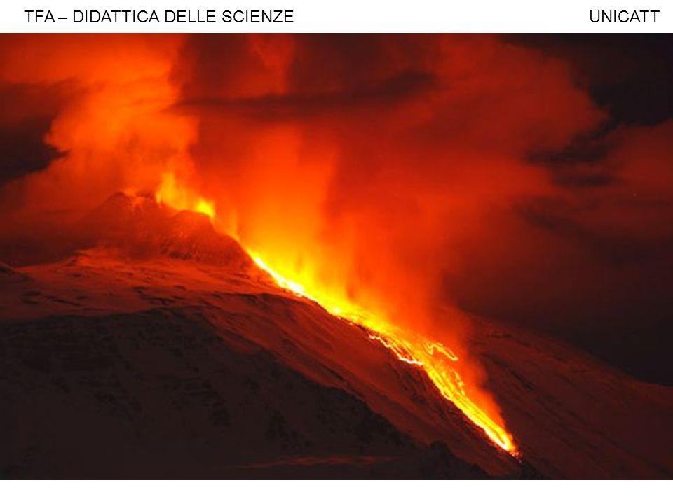TFA – DIDATTICA DELLE SCIENZE UNICATT Monsoni