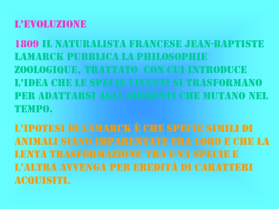 LEVOLUZIONE 1809 il naturalista francese jean-baptiste Lamarck pubblica la philosophie zoologique, trattato con cui introduce lidea che le specie vive