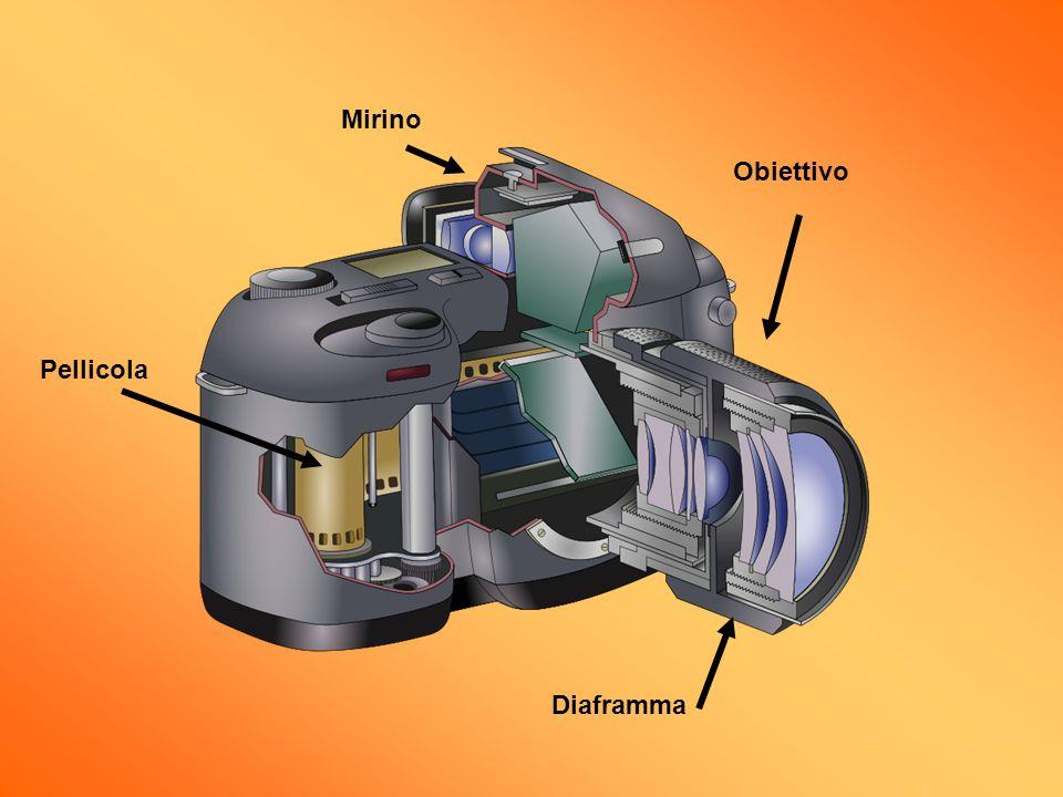 Obiettivo Diaframma Pellicola Mirino