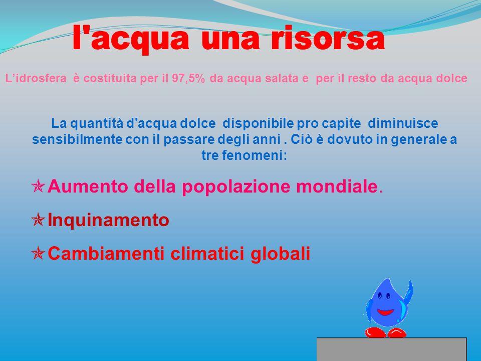 Lidrosfera è costituita per il 97,5% da acqua salata e per il resto da acqua dolce La quantità d'acqua dolce disponibile pro capite diminuisce sensibi