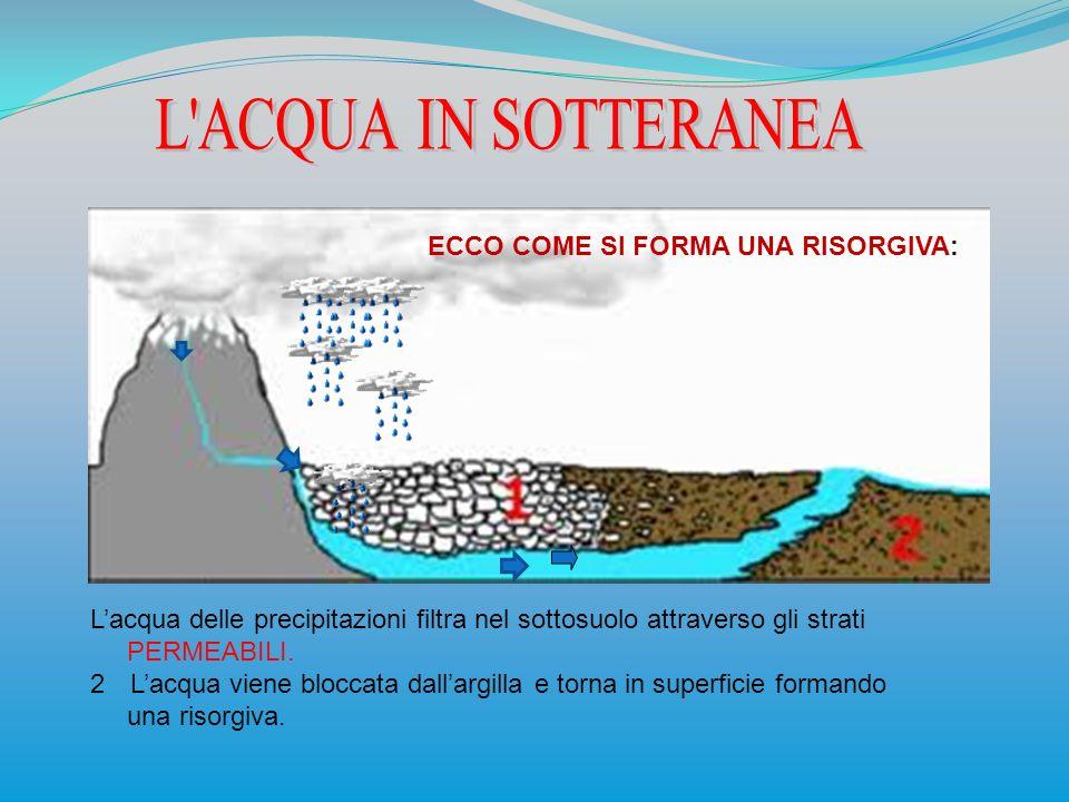 ECCO COME SI FORMA UNA RISORGIVA: Lacqua delle precipitazioni filtra nel sottosuolo attraverso gli strati PERMEABILI. 2Lacqua viene bloccata dallargil