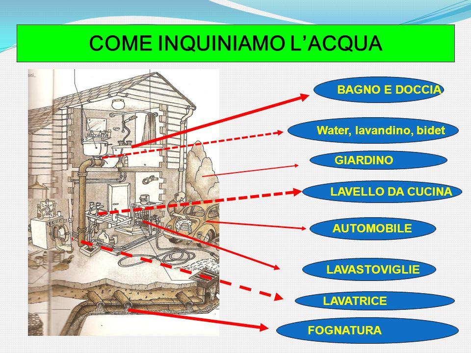 COME INQUINIAMO LACQUA BAGNO E DOCCIA AUTOMOBILE LAVASTOVIGLIE LAVELLO DA CUCINA LAVATRICE GIARDINO Water, lavandino, bidet FOGNATURA