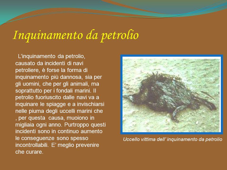 Inquinamento da petrolio Linquinamento da petrolio, causato da incidenti di navi petroliere, è forse la forma di inquinamento più dannosa, sia per gli