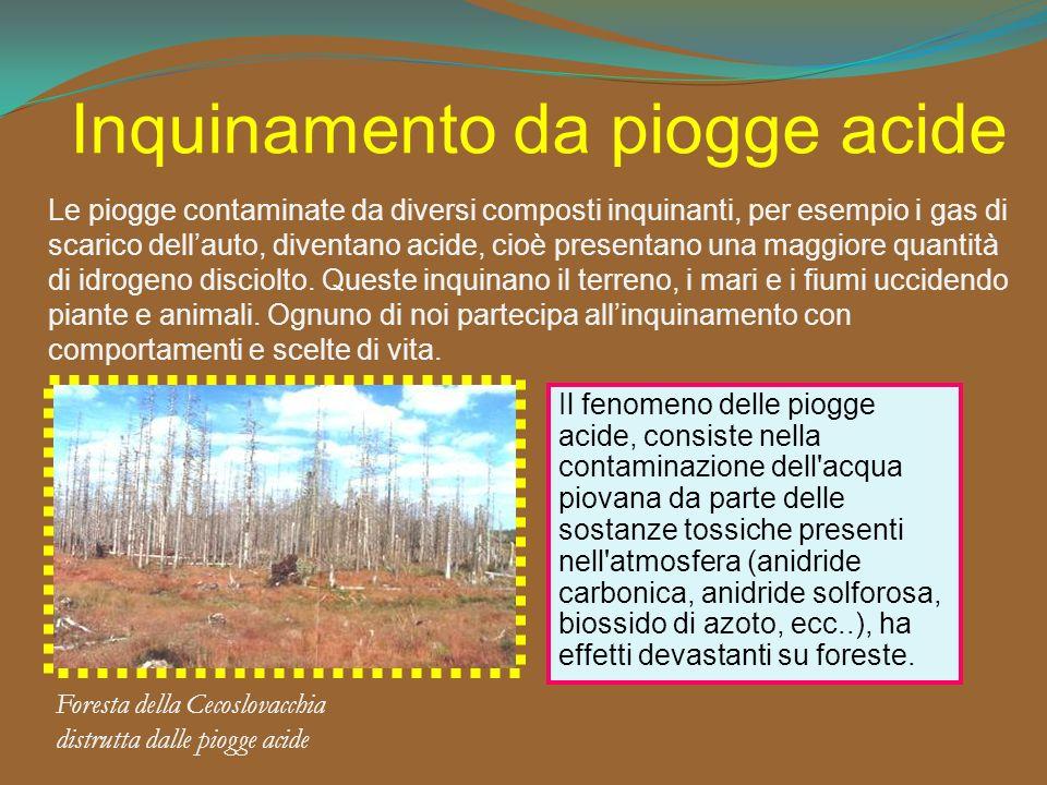 Inquinamento da piogge acide Foresta della Cecoslovacchia distrutta dalle piogge acide Le piogge contaminate da diversi composti inquinanti, per esemp