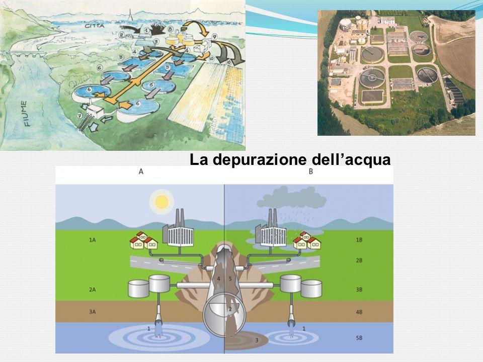 La depurazione dellacqua