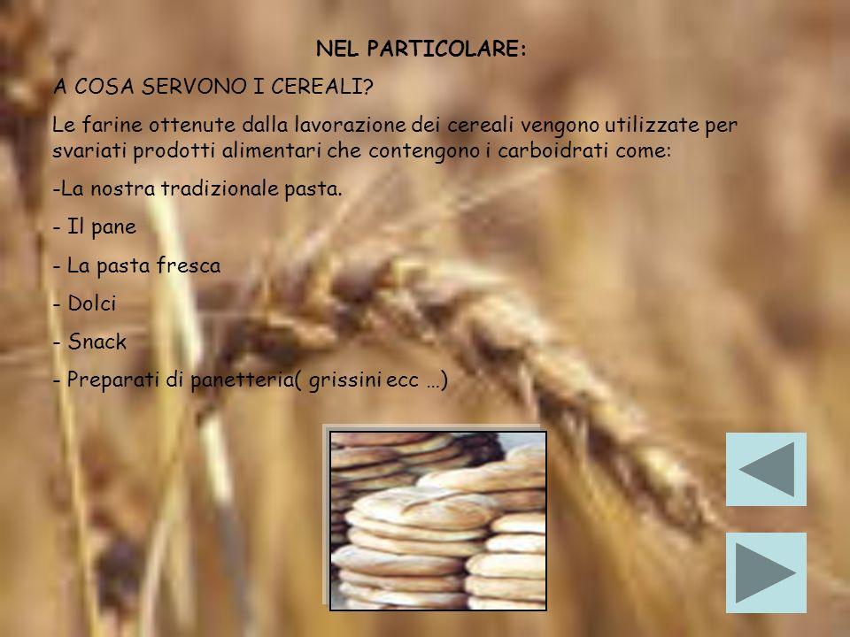IL VALORE NUTRITIVO DEI CEREALI I cereali sono la principale fonte di carboidrati per il nostro corpo.