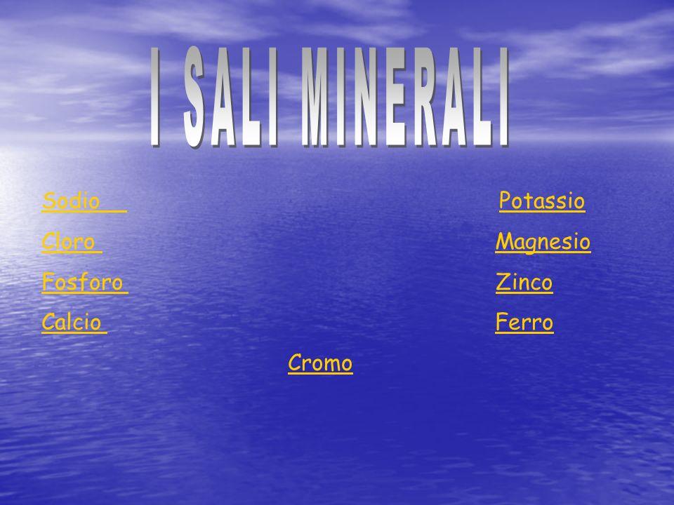 Sodio Potassio Cloro Magnesio Fosforo Zinco Calcio Ferro Cromo