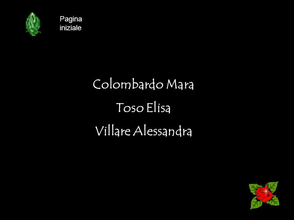 Colombardo Mara Toso Elisa Villare Alessandra Pagina iniziale