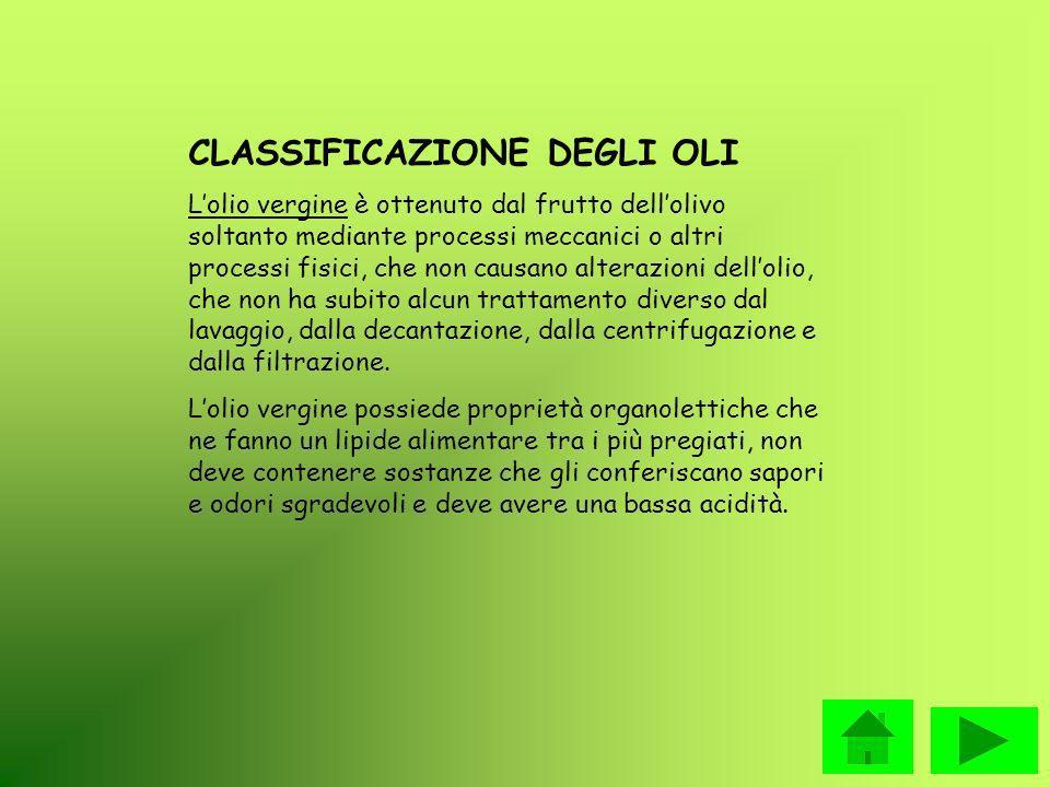 CLASSIFICAZIONE DEGLI OLI Lolio vergine è ottenuto dal frutto dellolivo soltanto mediante processi meccanici o altri processi fisici, che non causano