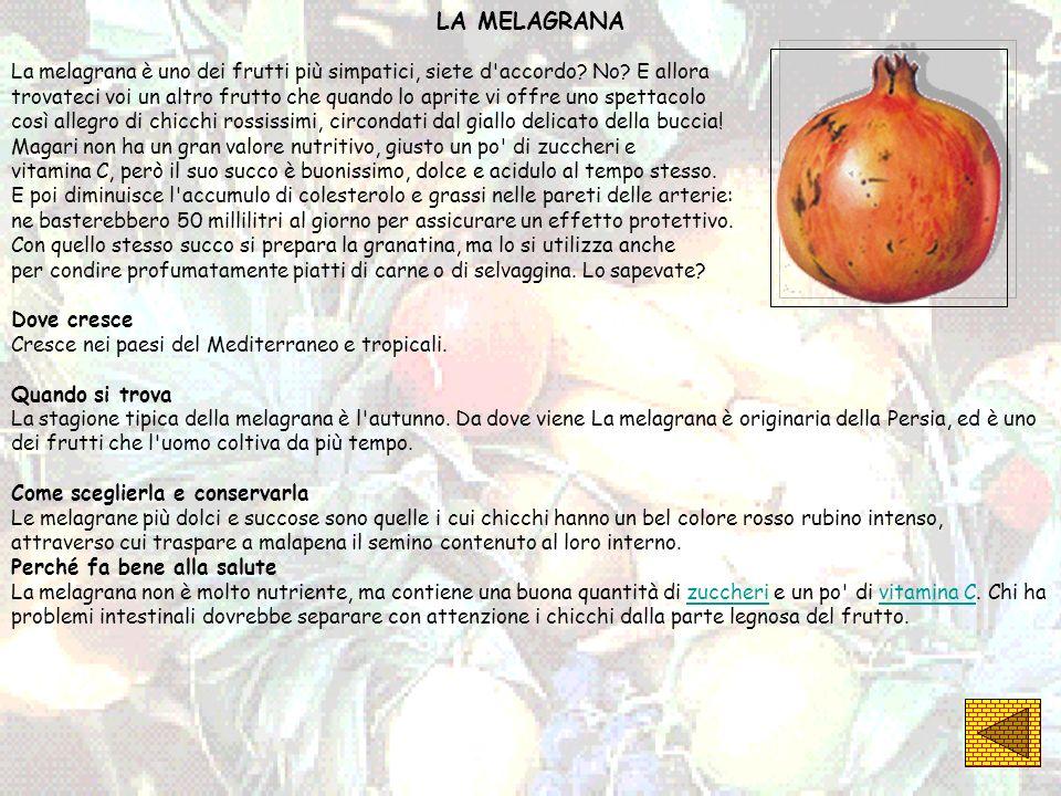 LA MELAGRANA La melagrana è uno dei frutti più simpatici, siete d'accordo? No? E allora trovateci voi un altro frutto che quando lo aprite vi offre un