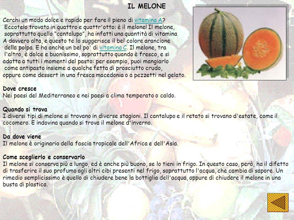 IL MELONE Cerchi un modo dolce e rapido per fare il pieno di vitamina A?vitamina A Eccotelo trovato in quattro e quattr'otto: è il melone! Il melone,