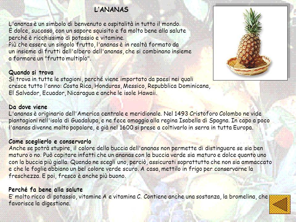 LANANAS L'ananas è un simbolo di benvenuto e ospitalità in tutto il mondo. È dolce, succoso, con un sapore squisito e fa molto bene alla salute perché