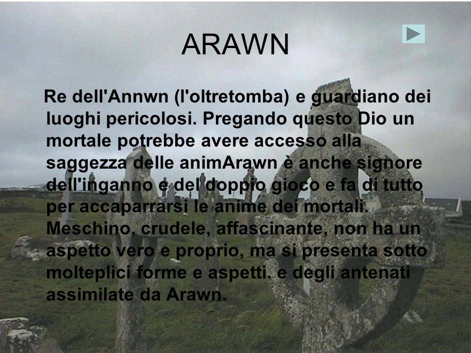 ARAWN Re dell'Annwn (l'oltretomba) e guardiano dei luoghi pericolosi. Pregando questo Dio un mortale potrebbe avere accesso alla saggezza delle animAr