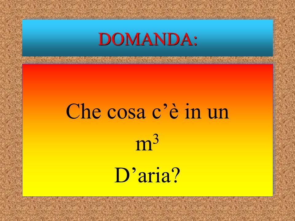 Che cosa cè in un m 3 Daria? Che cosa cè in un m3m3 Daria? DOMANDA:DOMANDA: