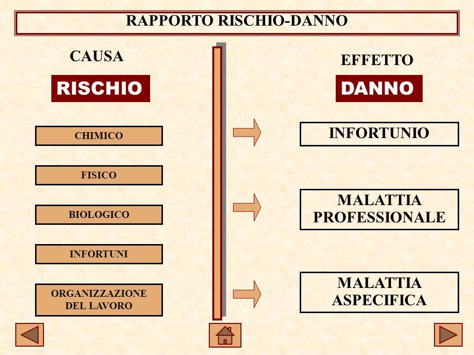 RAPPORTO RISCHIO-DANNO CAUSA CHIMICO FISICO BIOLOGICO INFORTUNI ORGANIZZAZIONE DEL LAVORO RISCHIO EFFETTO DANNO INFORTUNIO MALATTIA PROFESSIONALE MALATTIA ASPECIFICA