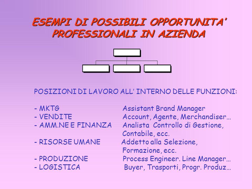 ESEMPI DI POSSIBILI OPPORTUNITA PROFESSIONALI IN AZIENDA POSIZIONI DI LAVORO ALL INTERNO DELLE FUNZIONI: - MKTG Assistant Brand Manager - VENDITE Acco