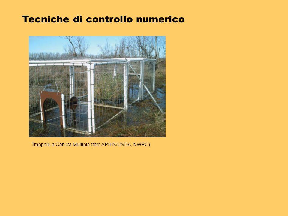 Tecniche di controllo numerico Trappole a Cattura Multipla (foto APHIS/USDA, NWRC)