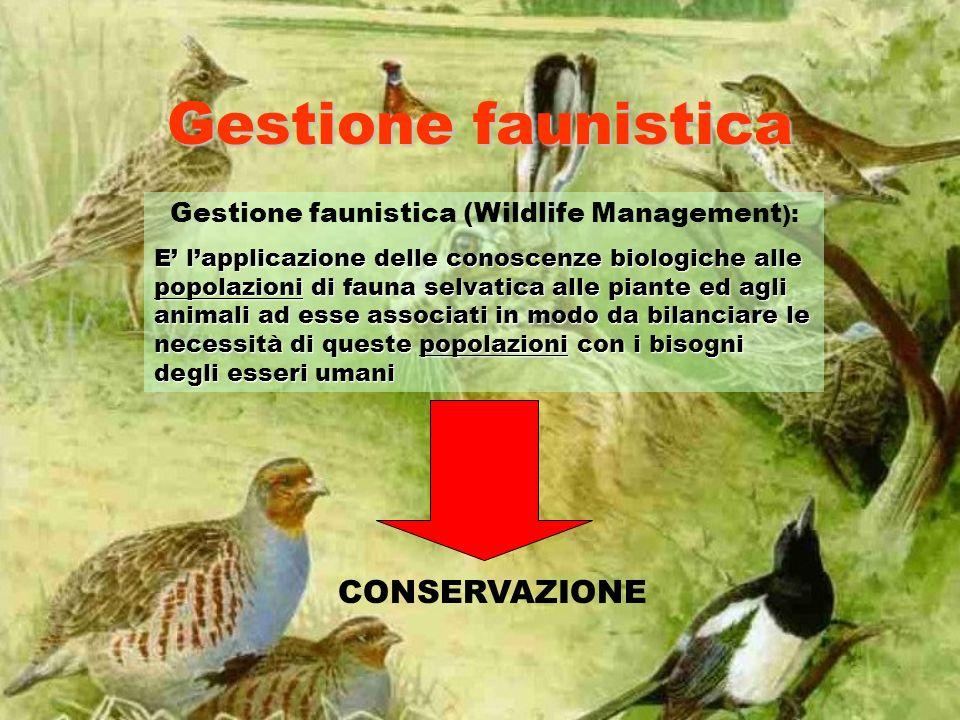 Gestione faunistica Gestione faunistica (Wildlife Management ): E lapplicazione delle conoscenze biologiche alle popolazioni di fauna selvatica alle p