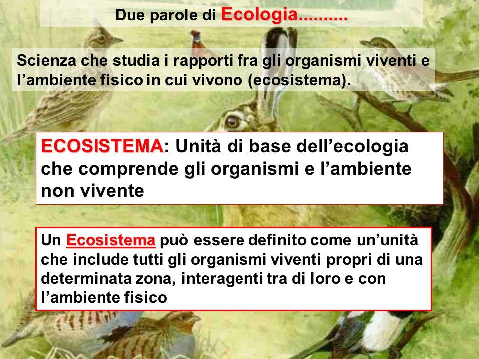 Ecologia.......... Due parole di Ecologia.......... Scienza che studia i rapporti fra gli organismi viventi e lambiente fisico in cui vivono (ecosiste