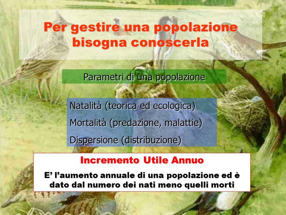 Per gestire una popolazione bisogna conoscerla Parametri di una popolazione Natalità (teorica ed ecologica) Mortalità (predazione, malattie) Dispersio