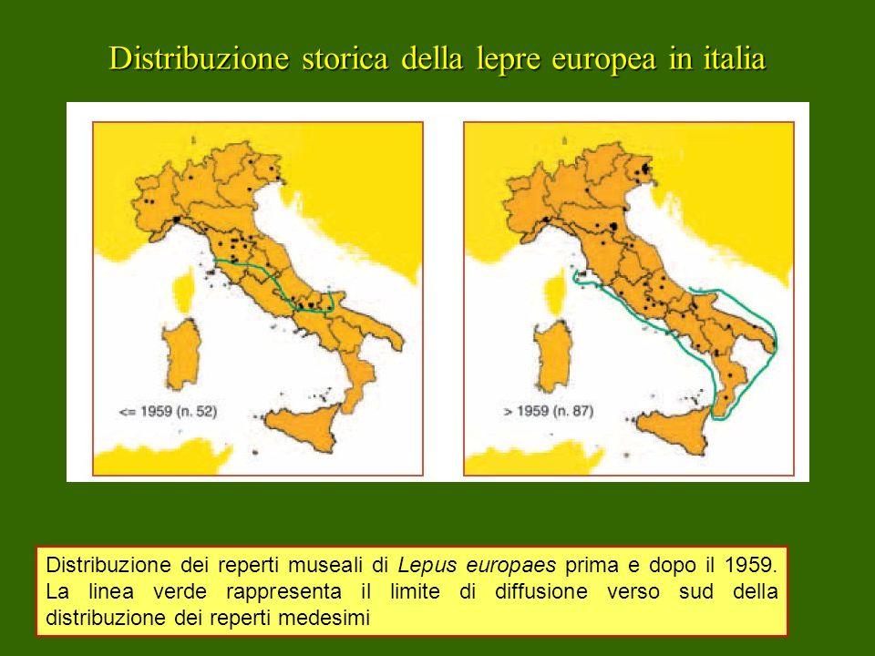 Distribuzione storica della lepre europea in italia Distribuzione dei reperti museali di Lepus europaes prima e dopo il 1959. La linea verde rappresen