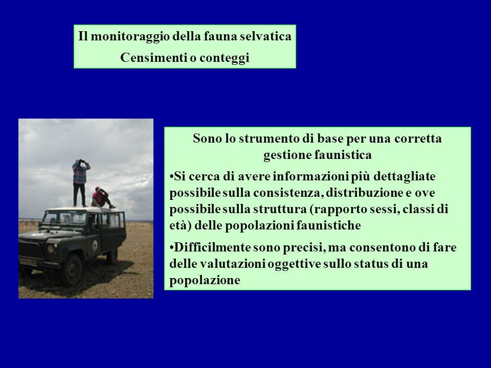 Il monitoraggio della fauna selvatica Censimenti o conteggi Sono lo strumento di base per una corretta gestione faunistica Si cerca di avere informazi