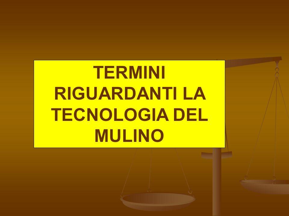 TERMINI RIGUARDANTI LA TECNOLOGIA DEL MULINO