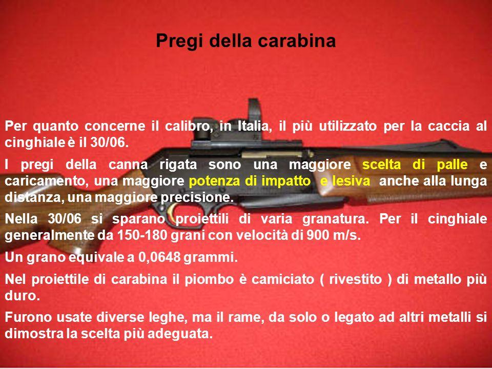 Pregi della carabina Per quanto concerne il calibro, in Italia, il più utilizzato per la caccia al cinghiale è il 30/06.