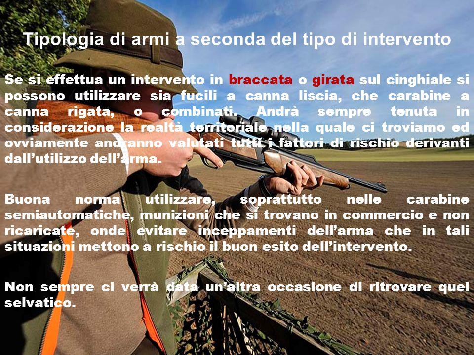 Tipologia di armi a seconda del tipo di intervento Se si effettua un intervento in braccata o girata sul cinghiale si possono utilizzare sia fucili a canna liscia, che carabine a canna rigata, o combinati.