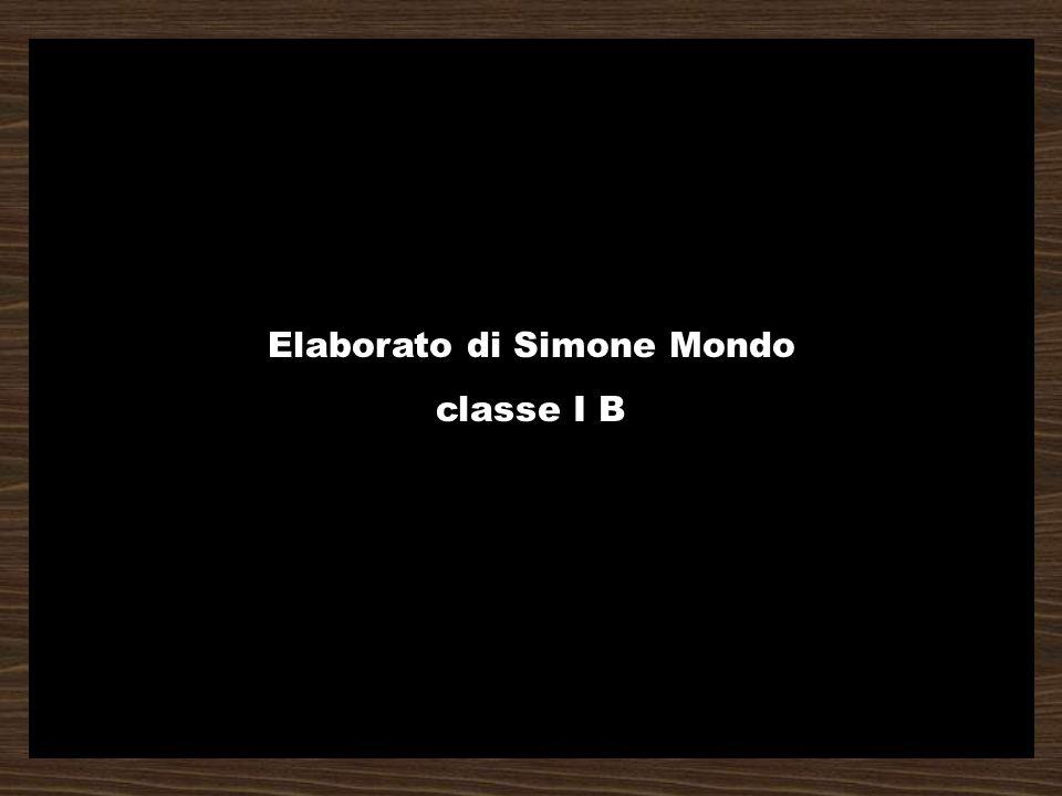 Elaborato di Simone Mondo classe I B