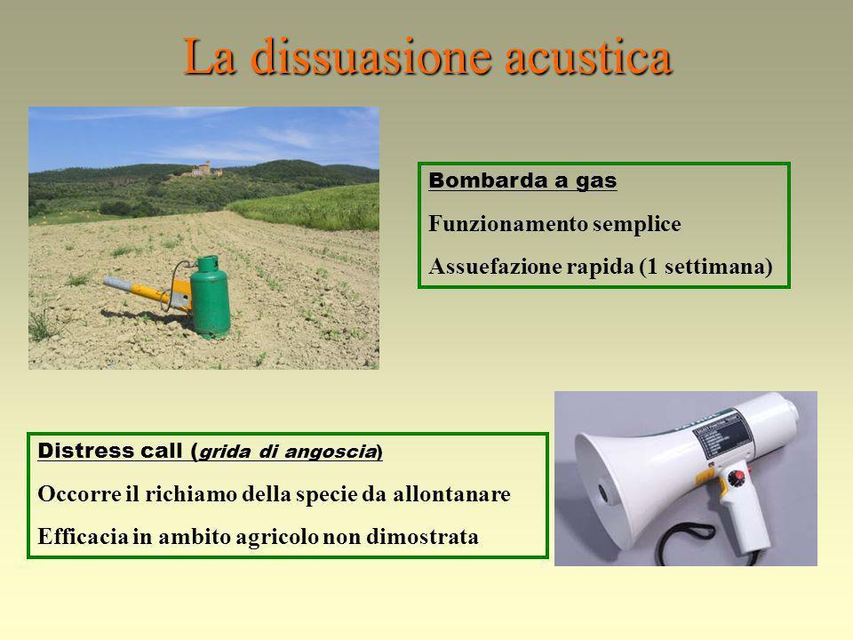 La dissuasione acustica Bombarda a gas Funzionamento semplice Assuefazione rapida (1 settimana) Distress call ( grida di angoscia) Occorre il richiamo