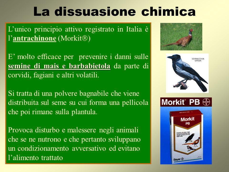La dissuasione chimica Lunico principio attivo registrato in Italia è lantrachinone (Morkit ) semine di mais e barbabietola E molto efficace per preve