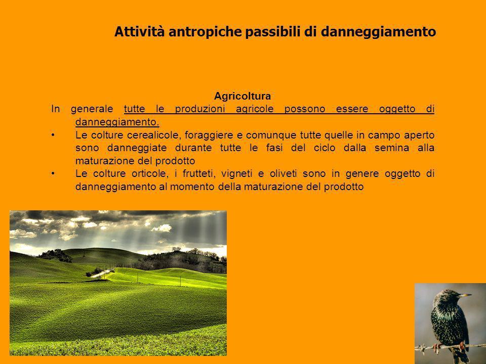 I danni da fauna selvatica in Toscana Circa 3.000.000