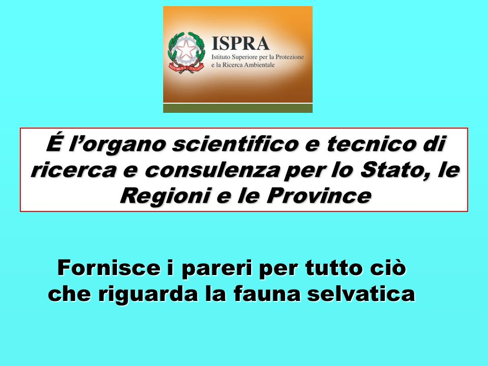 É lorgano scientifico e tecnico di ricerca e consulenza per lo Stato, le Regioni e le Province Fornisce i pareri per tutto ciò che riguarda la fauna s