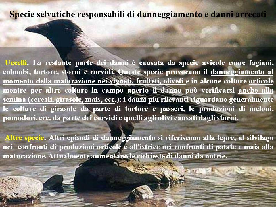 Specie selvatiche responsabili di danneggiamento e danni arrecati Uccelli. La restante parte dei danni è causata da specie avicole come fagiani, colom