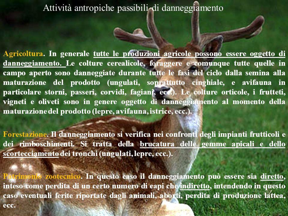 Attività antropiche passibili di danneggiamento Agricoltura. In generale tutte le produzioni agricole possono essere oggetto di danneggiamento. Le col