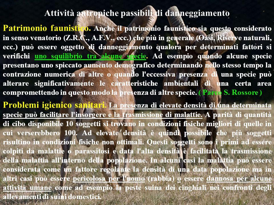 Attività antropiche passibili di danneggiamento Patrimonio faunistico. Anche il patrimonio faunistico sia questo considerato in senso venatorio (Z.R.C