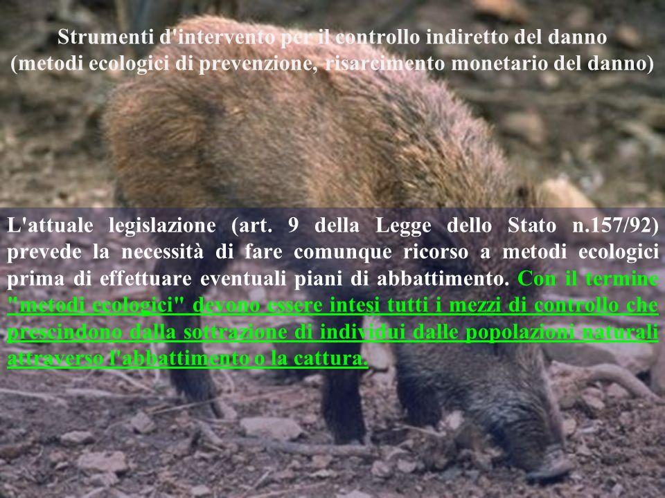 Strumenti d'intervento per il controllo indiretto del danno (metodi ecologici di prevenzione, risarcimento monetario del danno) L'attuale legislazione