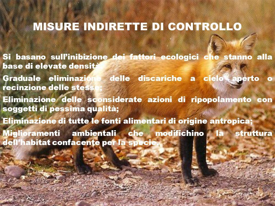 MISURE INDIRETTE DI CONTROLLO Si basano sullinibizione dei fattori ecologici che stanno alla base di elevate densità. Graduale eliminazione delle disc