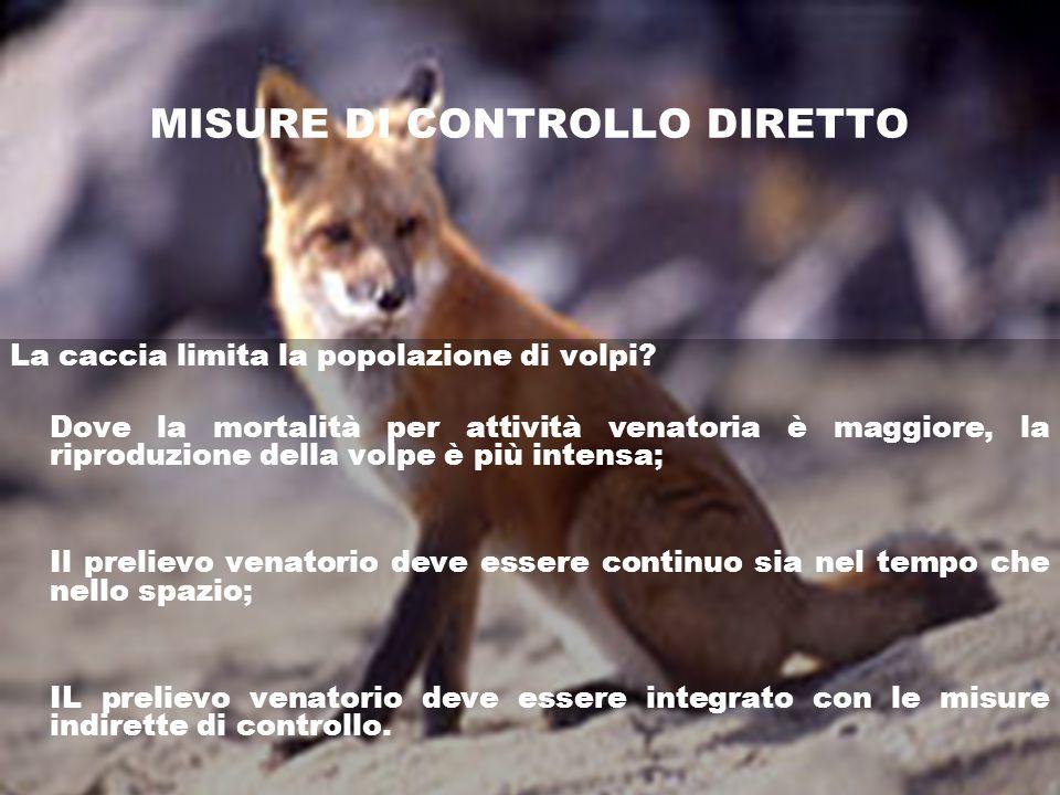MISURE DI CONTROLLO DIRETTO La caccia limita la popolazione di volpi? Dove la mortalità per attività venatoria è maggiore, la riproduzione della volpe