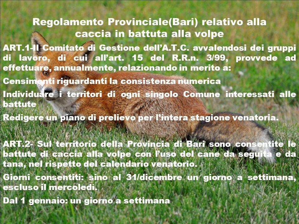 Regolamento Provinciale(Bari) relativo alla caccia in battuta alla volpe ART.1-Il Comitato di Gestione dellA.T.C. avvalendosi dei gruppi di lavoro, di