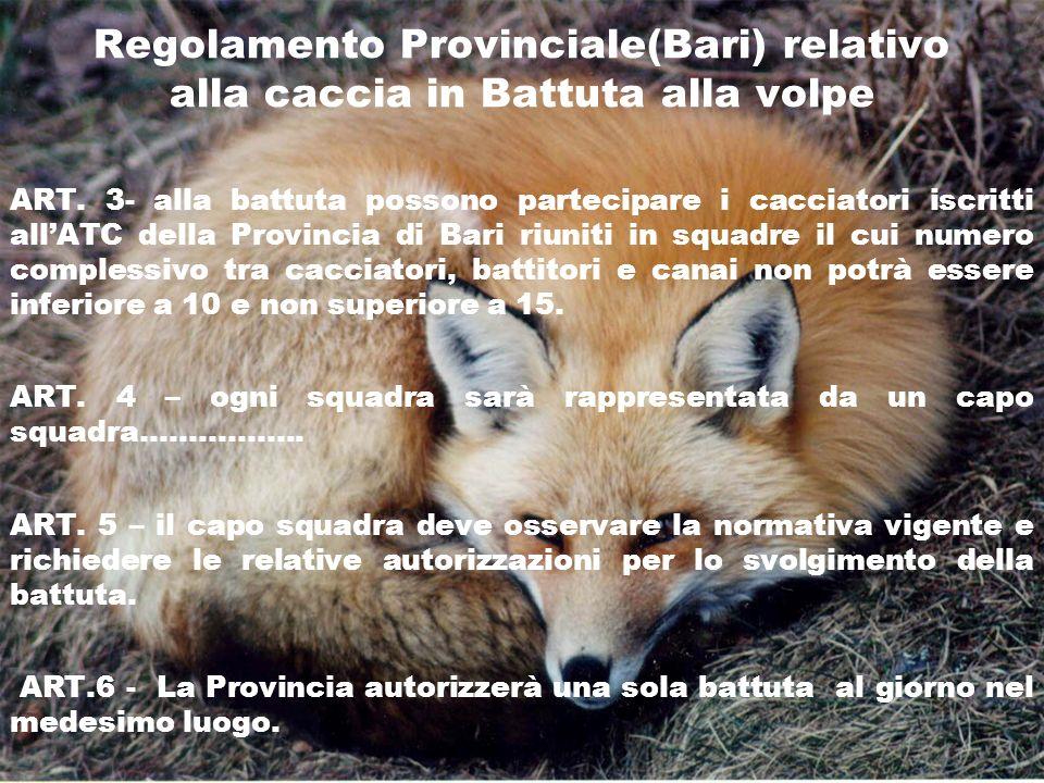 Regolamento Provinciale(Bari) relativo alla caccia in Battuta alla volpe ART. 3- alla battuta possono partecipare i cacciatori iscritti allATC della P