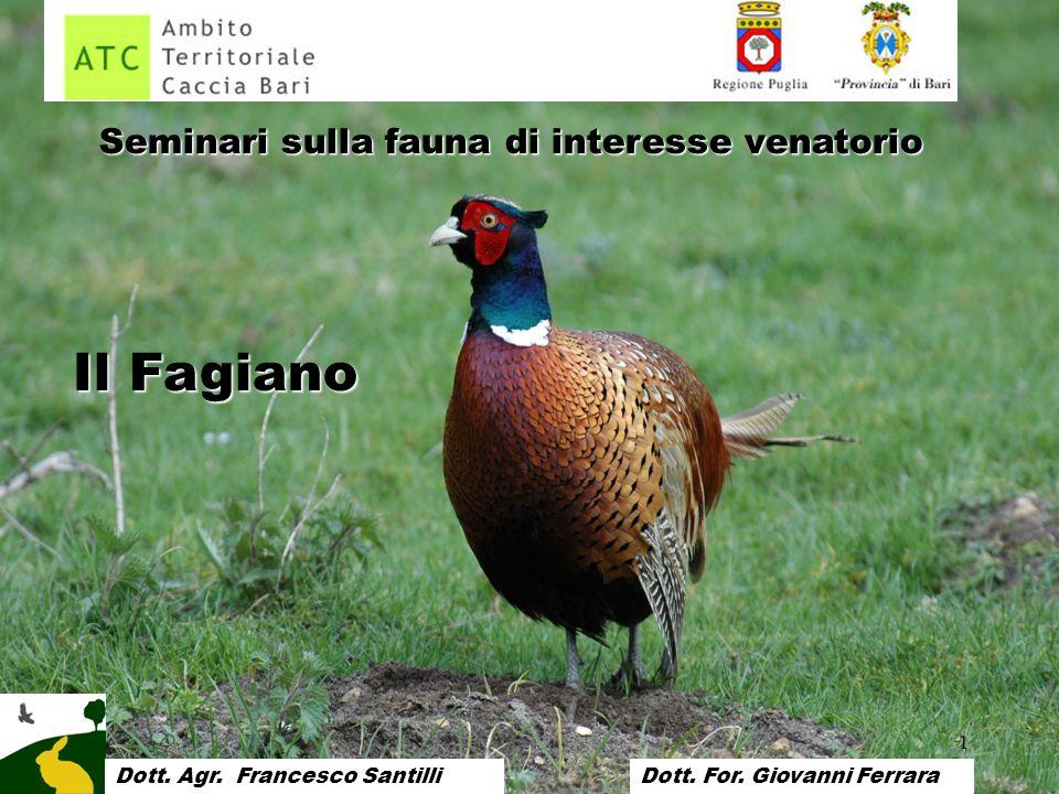 1 Seminari sulla fauna di interesse venatorio Il Fagiano Dott. Francesco SantilliDott. Agr. Francesco SantilliDott. For. Giovanni Ferrara
