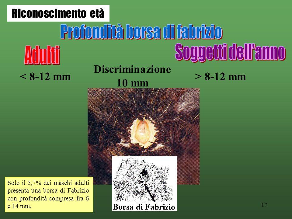 17 < 8-12 mm> 8-12 mm Discriminazione 10 mm Solo il 5,7% dei maschi adulti presenta una borsa di Fabrizio con profondità compresa fra 6 e 14 mm. Ricon