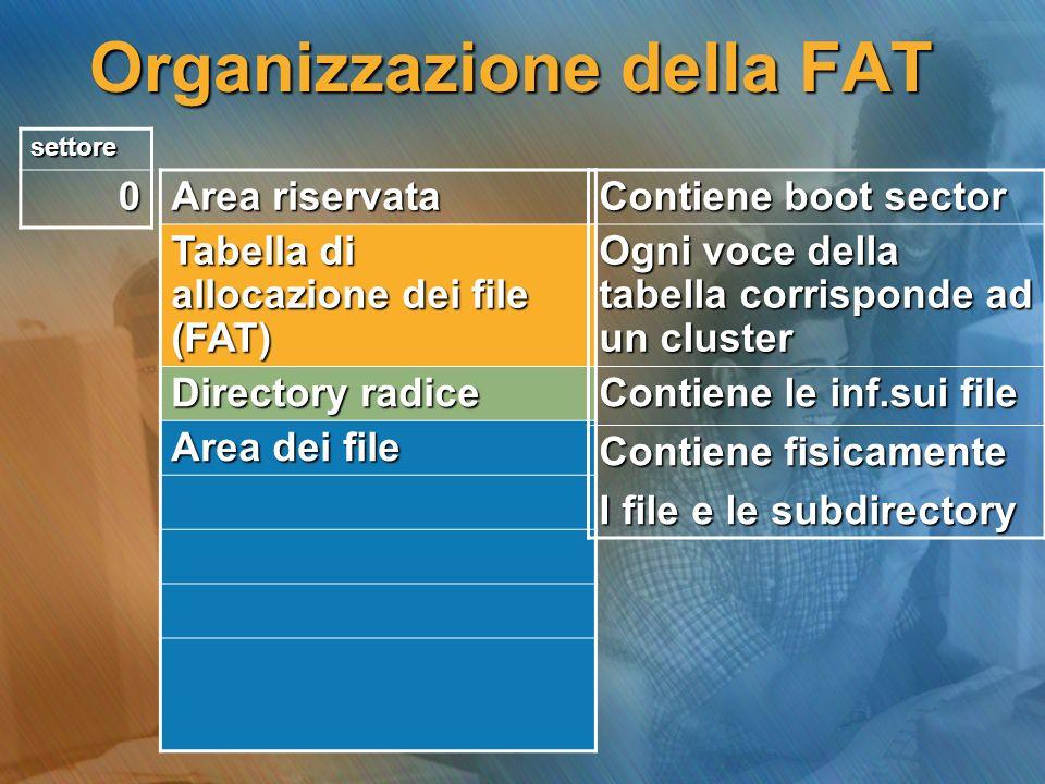 Organizzazione della FAT Area riservata Tabella di allocazione dei file (FAT) Directory radice Area dei file Contiene boot sector Ogni voce della tabe